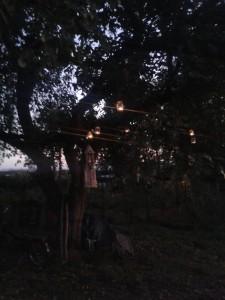 Teelichter vor Windspiel und Baum