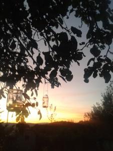 Teelichter im Baum vor Sonnenuntergang