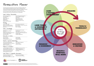 Holmgren's permaculture flower.